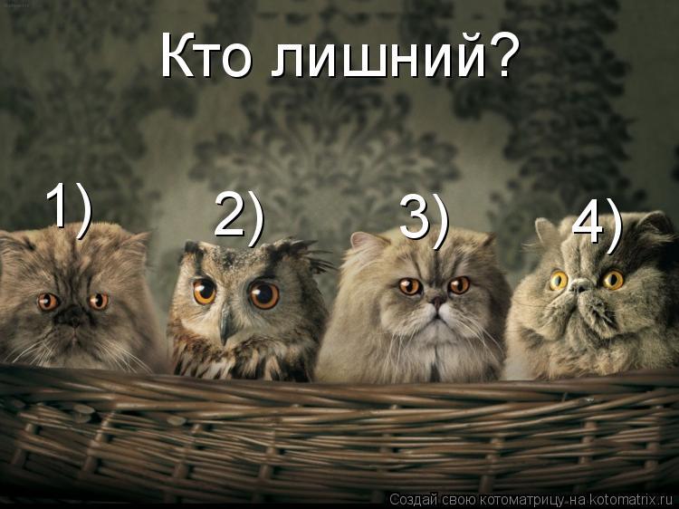 Котоматрица: 1) 2) 3) 4) Кто лишний?