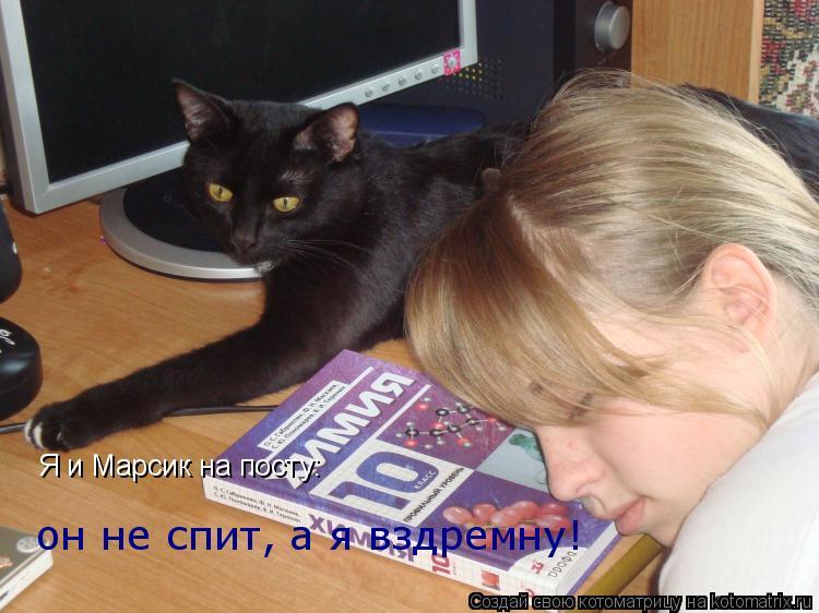 Котоматрица: он не спит, а я вздремну! Я и Марсик на посту: