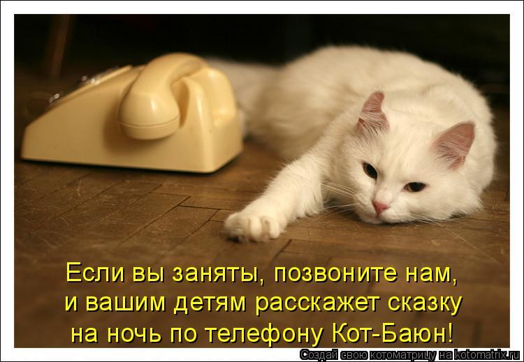 Котоматрица: Если вы заняты, позвоните нам,  и вашим детям расскажет сказку  на ночь по телефону Кот-Баюн!