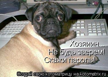 Котоматрица: Не будь зверем! Скажи пароль! Хозяиин...
