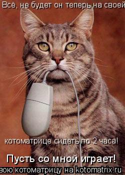 Котоматрица: Всё, не будет он теперь на своей  котоматрице сидеть по 2 часа! Пусть со мной играет!