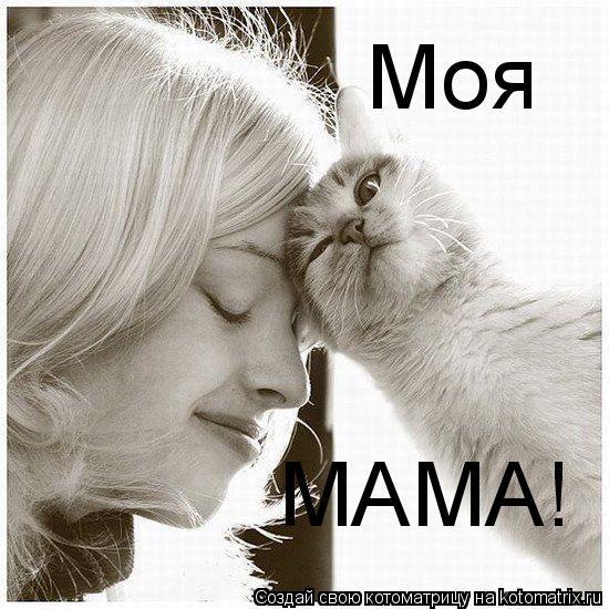 Котоматрица: МАМА! Моя