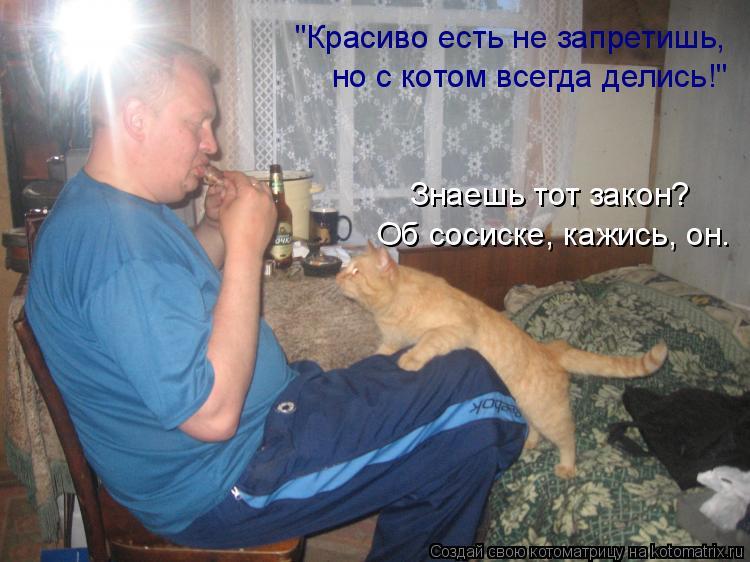 """Котоматрица: """"Красиво есть не запретишь, но с котом всегда делись!"""" Знаешь тот закон? Об сосиске, кажись, он."""