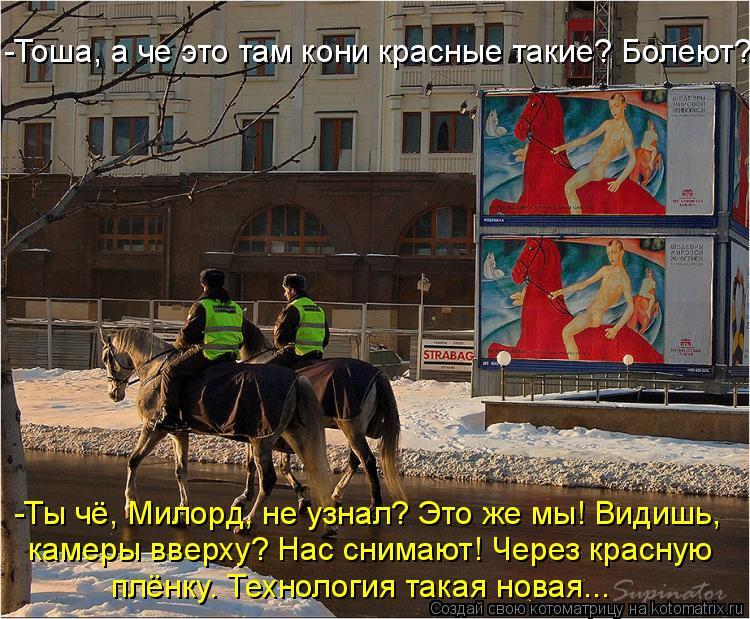 Котоматрица: -Тоша, а че это там кони красные такие? Болеют?  -Ты чё, Милорд, не узнал? Это же мы! Видишь,  камеры вверху? Нас снимают! Через красную  плёнку. Те