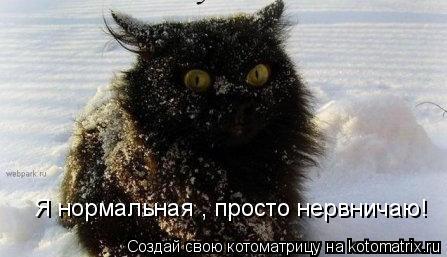 Котоматрица: Я нормальная , просто нервничаю!