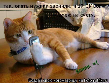 Котоматрица: так, опять мужики звонили. и 17 СМСок.  я имею на счету. блиин. =(