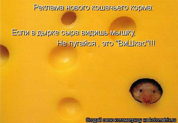 """Котоматрица: Реклама нового кошачьего корма: Если в дырке сыра видишь мышку, Не пугайся , это """"ВиШкас""""!!!"""
