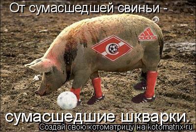 Котоматрица: От сумасшедшей свиньи - сумасшедшие шкварки.