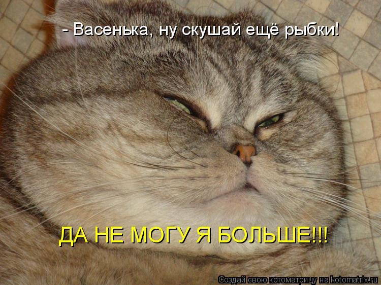 Котоматрица: - Васенька, ну скушай ещё рыбки! ДА НЕ МОГУ Я БОЛЬШЕ!!!