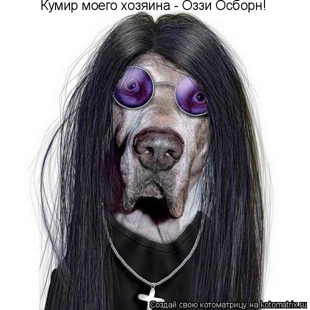 Котоматрица: Кумир моего хозяина - Оззи Осборн!