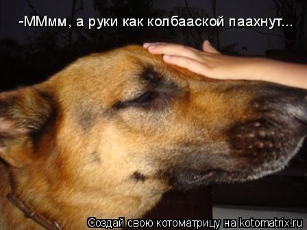 Котоматрица: -ММмм, а руки как колбааской паахнут...
