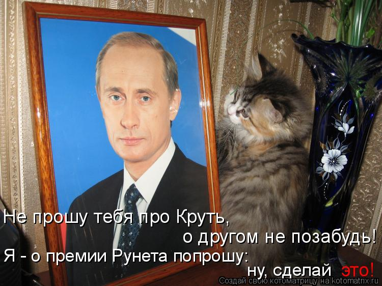 Котоматрица: Не прошу тебя про Круть, о другом не позабудь! Я - о премии Рунета попрошу: ну, сделай это!