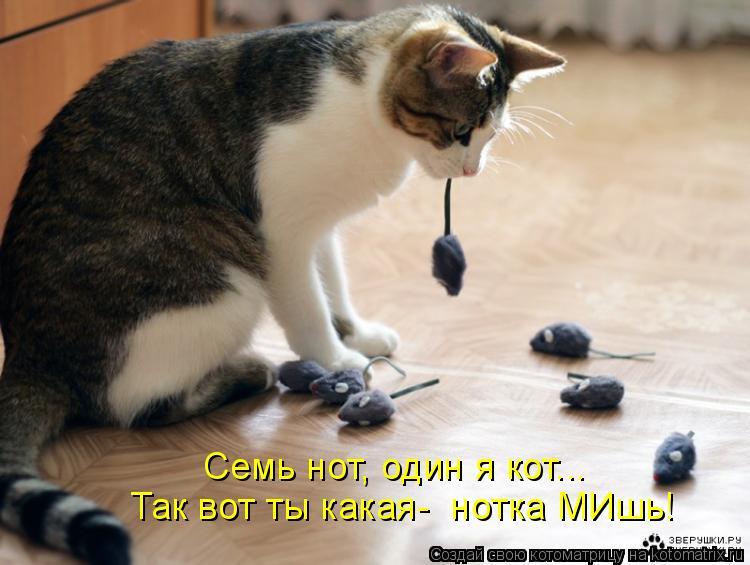 Котоматрица: Так вот ты какая-  нотка МИшь! Семь нот, один я кот...