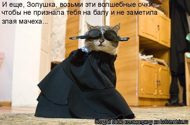 Котоматрица: И еще, Золушка, возьми эти волшебные очки, чтобы не признала тебя на балу и не заметила злая мачеха...