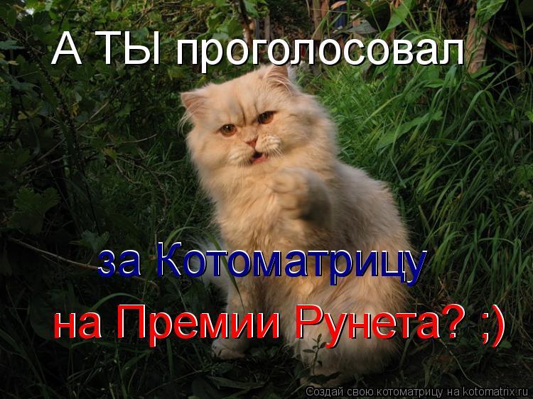 Котоматрица: А ТЫ проголосовал за Котоматрицу на Премии Рунета? ;) на Премии Рунета? ;) за Котоматрицу