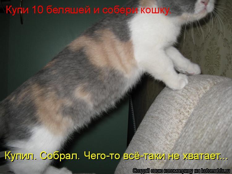 Котоматрица: Купи 10 беляшей и собери кошку. Купил. Собрал. Чего-то всё-таки не хватает...