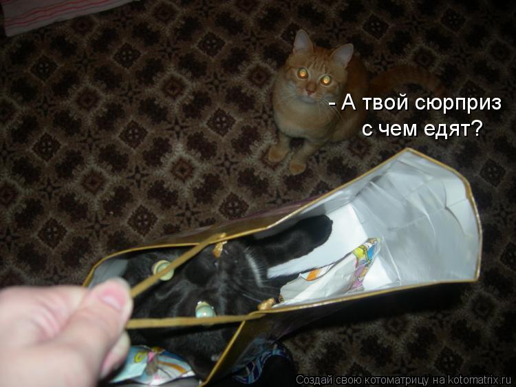 Котоматрица: - А твой сюрприз  с чем едят?