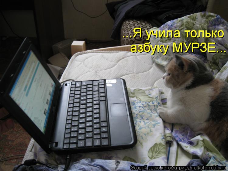 Котоматрица: ...Я учила только  азбуку МУРЗЕ...