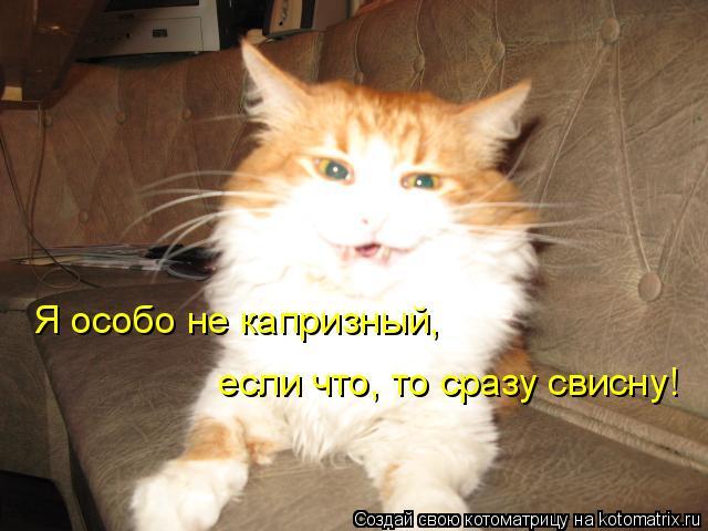 Котоматрица: Я особо не капризный, если что, то сразу свисну!