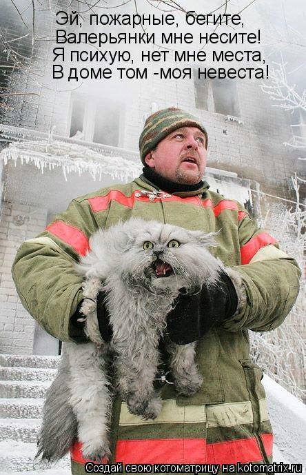 Эй, пожарные, бегите, Валерьянки мне несите! Я психую, нет мне места, В доме том -моя невеста!