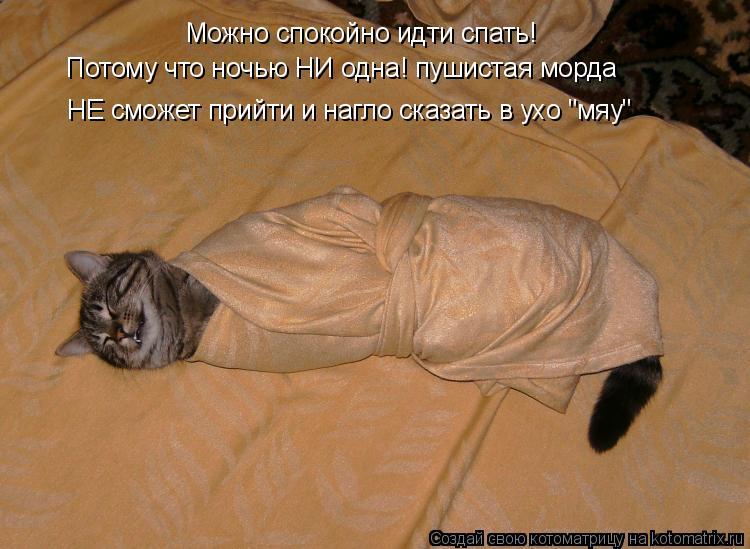 """Котоматрица: Можно спокойно идти спать! Потому что ночью НИ одна! пушистая морда НЕ сможет прийти и нагло сказать в ухо """"мяу"""""""