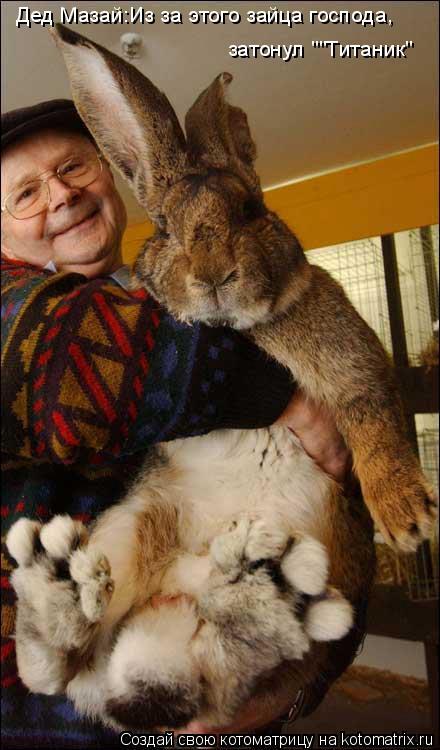 """Котоматрица: Дед Мазай:Из за этого зайца господа,  затонул """"""""Титаник"""""""