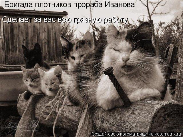 Котоматрица: Бригада плотников прораба Иванова  Сделает за вас всю грязную работу