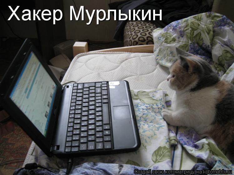 Котоматрица: Хакер Мурлыкин