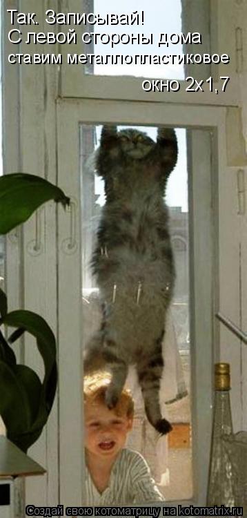 Котоматрица: Так. Записывай! С левой стороны дома ставим металлопластиковое окно 2х1,7