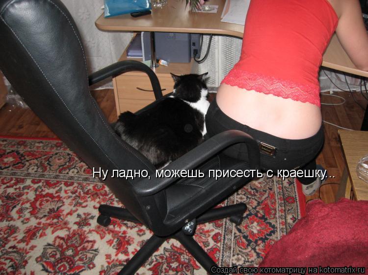 Котоматрица: Ну ладно, можешь присесть с краешку...