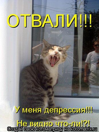 Котоматрица: ОТВАЛИ!!! У меня депрессия!!! Не видно что-ли!?!