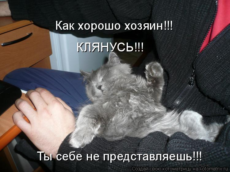Котоматрица: Как хорошо хозяин!!! Ты себе не представляешь!!! КЛЯНУСЬ!!!