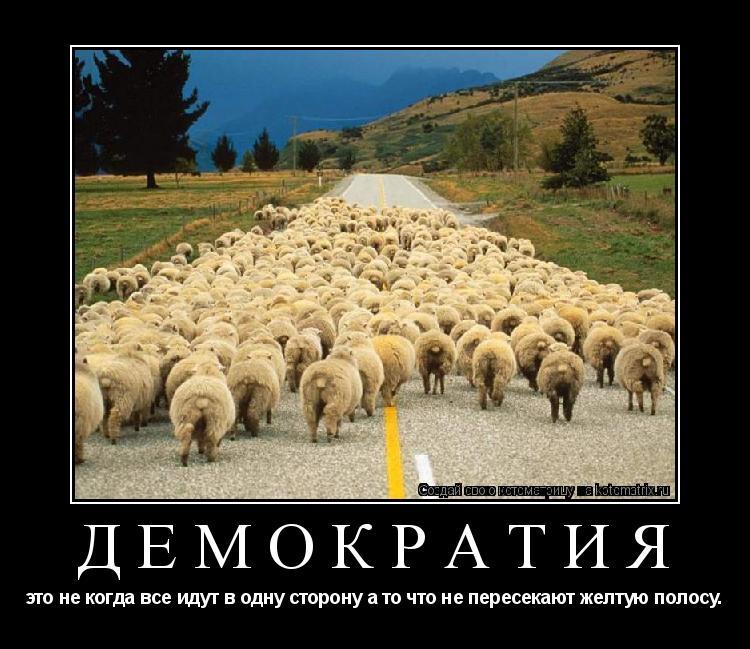 Котоматрица: демократия это не когда все идут в одну сторону а то что не пересекают желтую полосу.