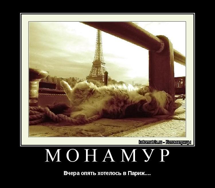 Котоматрица: монамур Вчера опять хотелось в Париж....