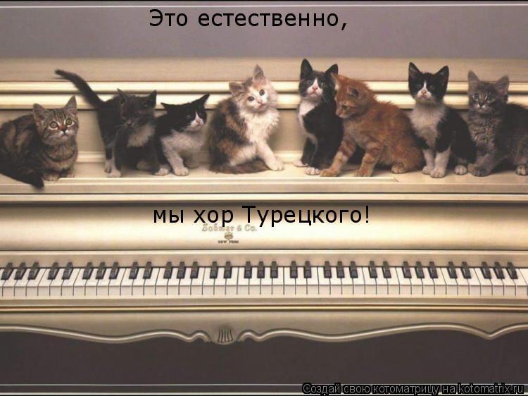 Котоматрица: Это естественно,  мы хор Турецкого!