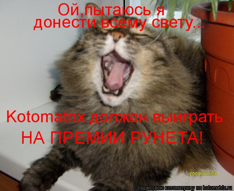 Котоматрица: Ой,пытаюсь я  донести всему свету... Kotomatrix должен выиграть НА ПРЕМИИ РУНЕТА!