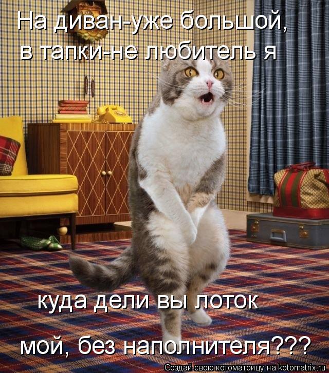Котоматрица: На диван-уже большой, в тапки-не любитель я куда дели вы лоток мой, без наполнителя???