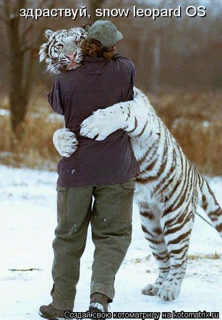 Котоматрица: здраствуй, snow leopard OS