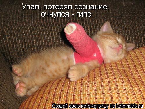 Котоматрица: Упал, потерял сознание,  очнулся - гипс.
