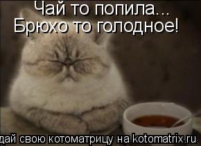 Котоматрица: Чай то попила... Брюхо то голодное!