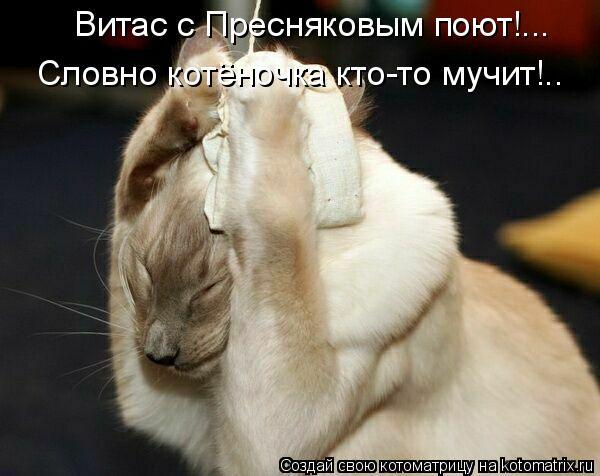 Котоматрица: Витас с Пресняковым поют!... Словно котеночка кто-то мучит!.. ..