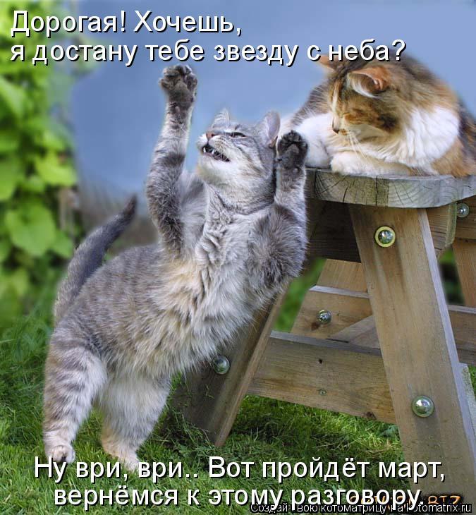Котоматрица: Ну ври, ври.. Вот пройдёт март,  вернёмся к этому разговору. Дорогая! Хочешь,  я достану тебе звезду с неба?