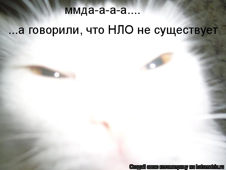 Котоматрица: ммда-а-а-а.... ...а говорили, что НЛО не существует