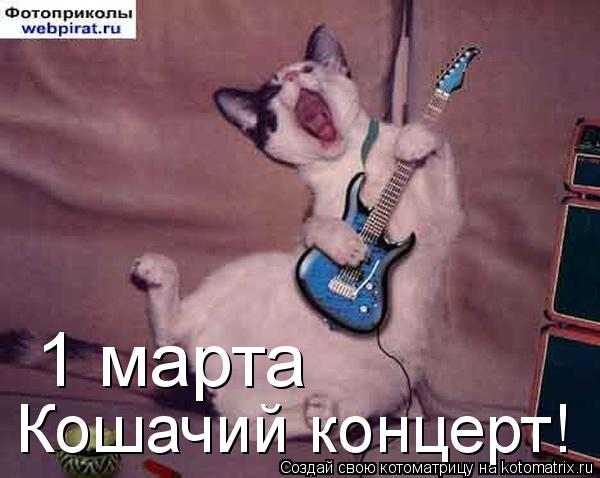 Котоматрица: 1 марта Кошачий концерт!