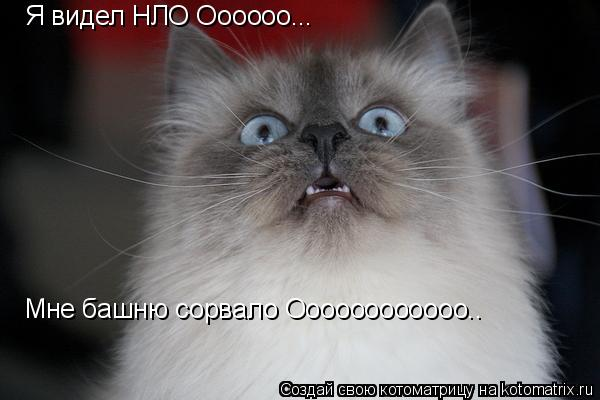 Котоматрица: Я видел НЛО Оооооо... Мне башню сорвало Оооооооооооо..
