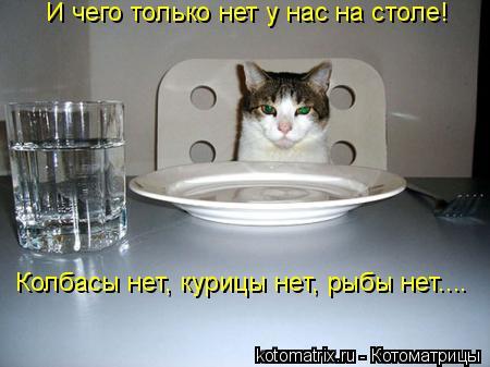 Котоматрица: И чего только нет у нас на столе! Колбасы нет, курицы нет, рыбы нет....