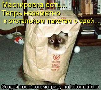 Котоматрица: Маскировка есть... Тепрь незаметно к отстальным пакетам с едой...