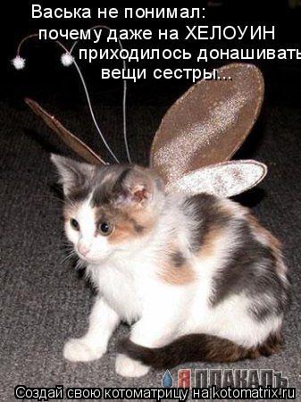 Котоматрица: Васька не понимал: почему даже на ХЕЛОУИН приходилось донашивать  вещи сестры...