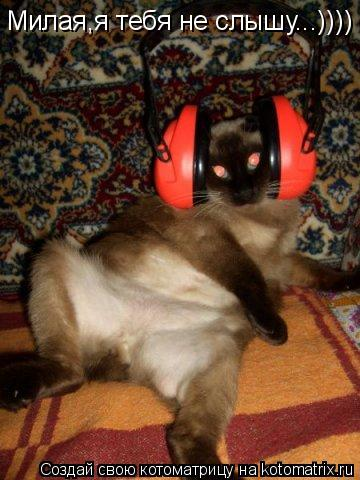 Котоматрица: Милая,я тебя не слышу...))))