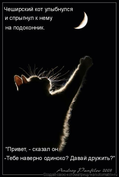 """Котоматрица: """"Привет, - сказал он. -Тебе наверно одиноко? Давай дружить?"""" Чеширский кот улыбнулся и спрыгнул к нему  на подоконник."""